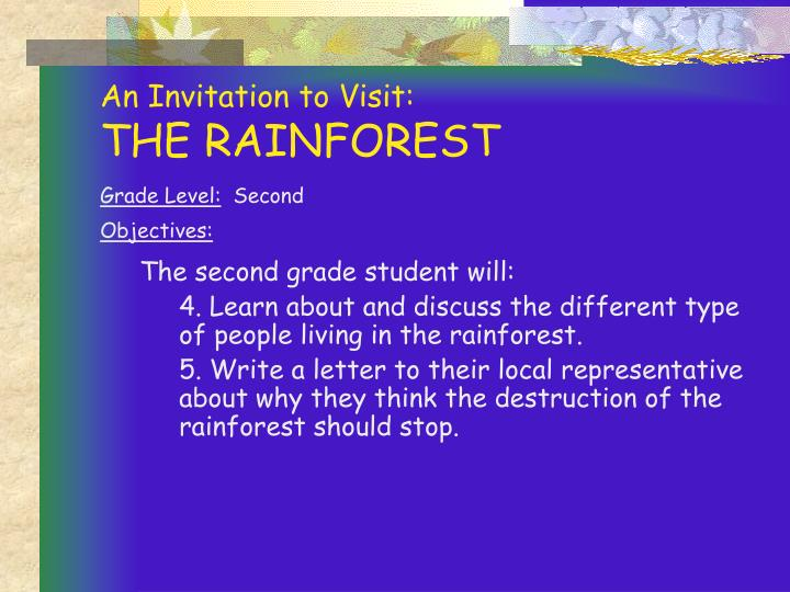 An invitation to visit the rainforest3