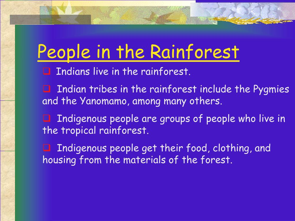 People in the Rainforest