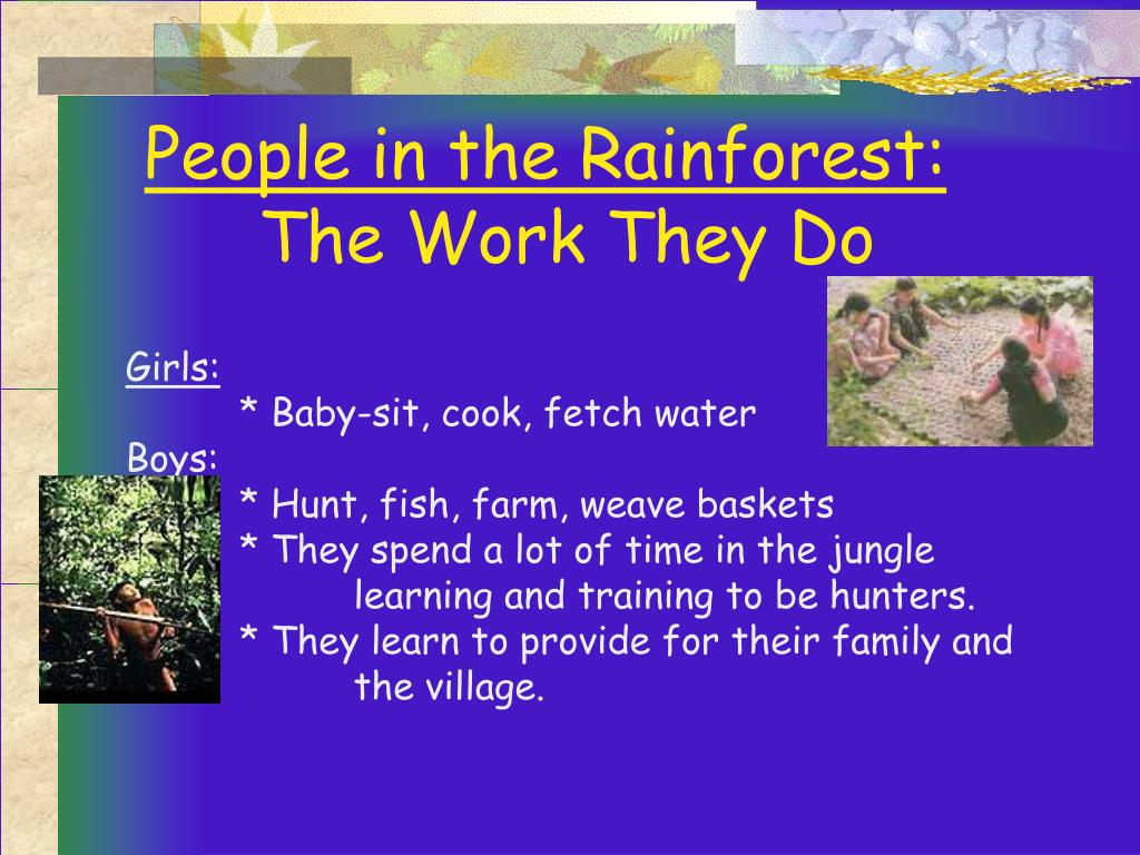 People in the Rainforest: