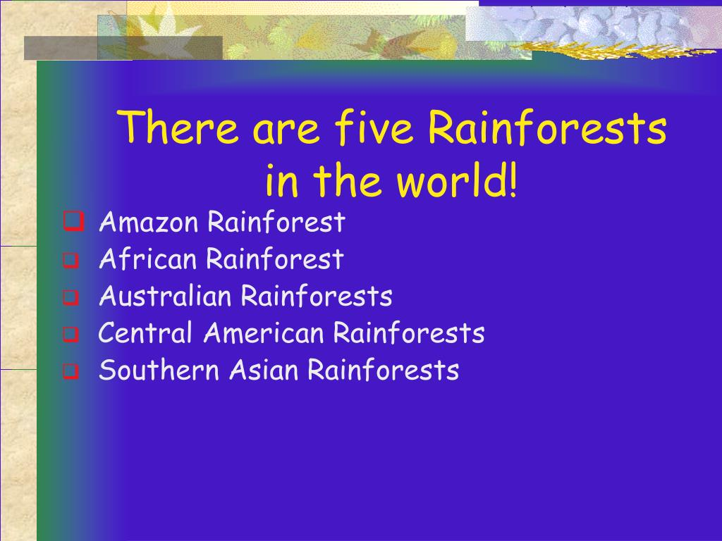 There are five Rainforests in the world!