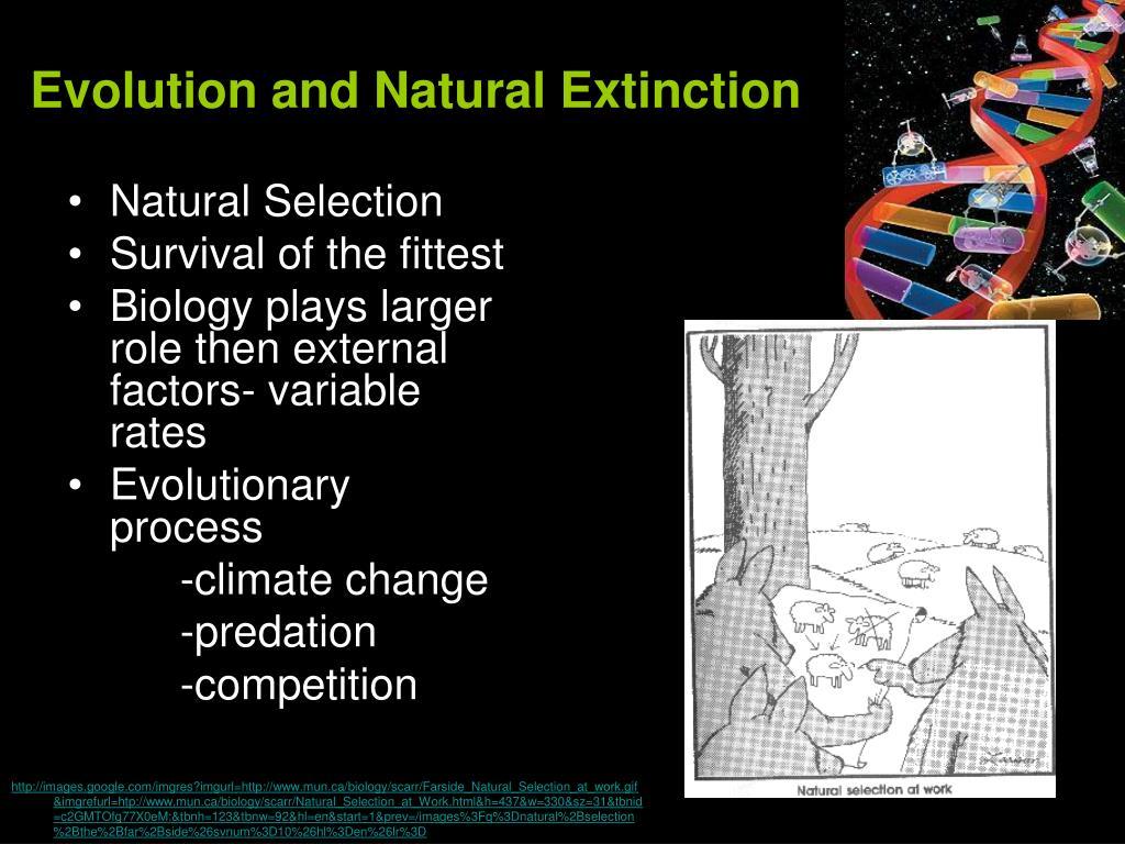 Evolution and Natural Extinction