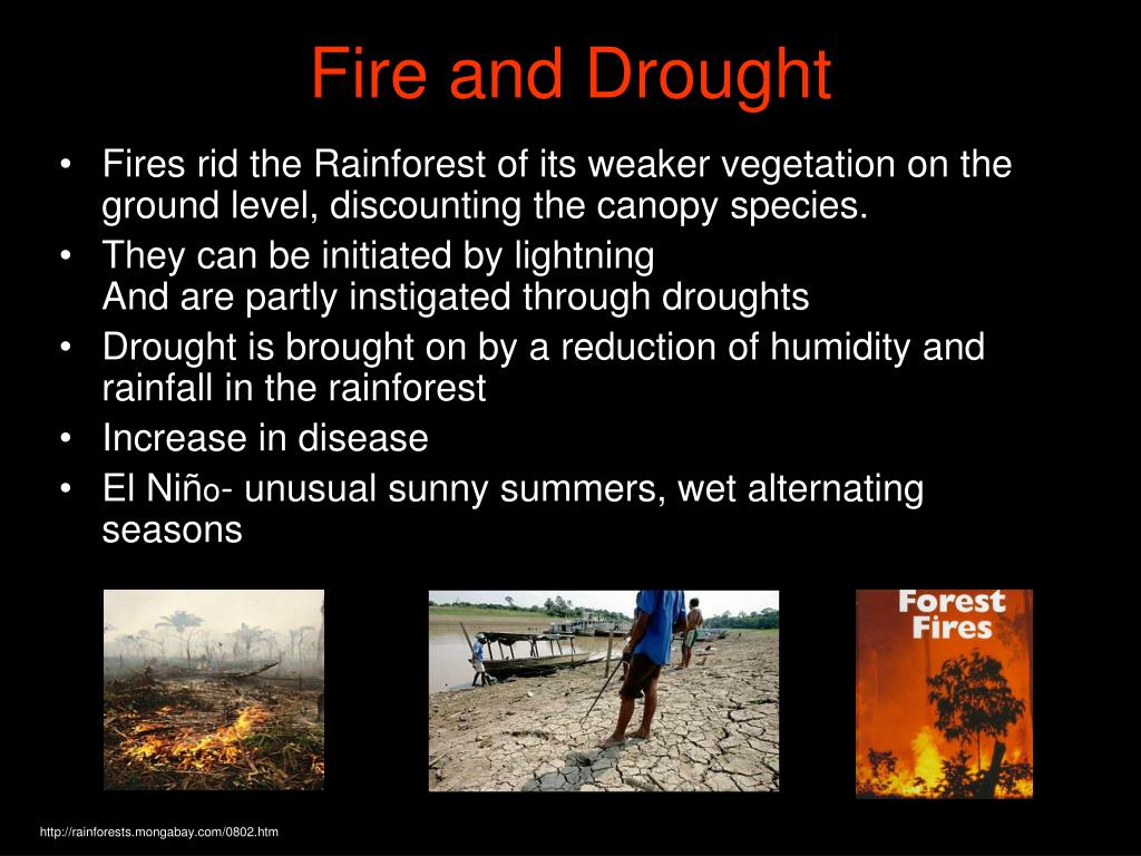 Fire and Drought
