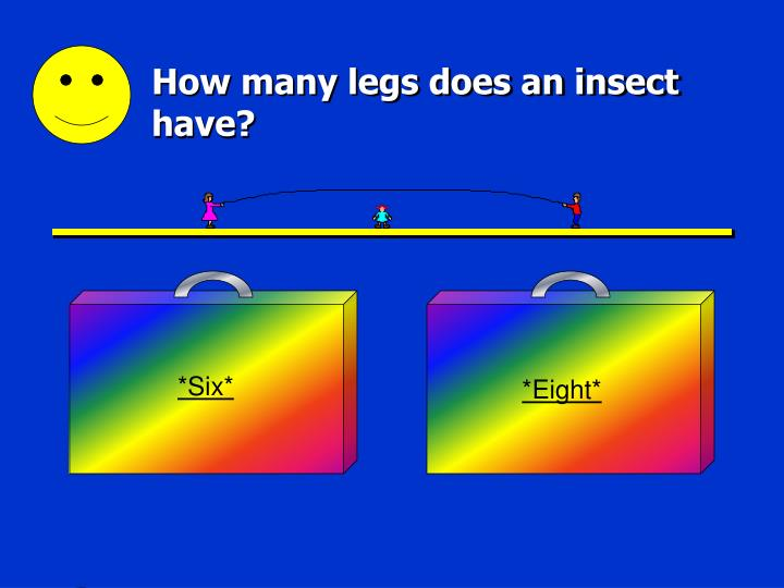 How many legs does an insect have l.jpg