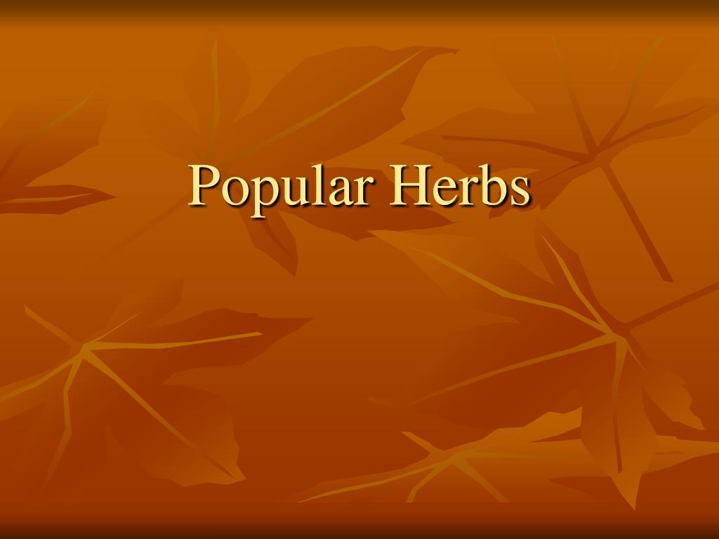 Popular Herbs