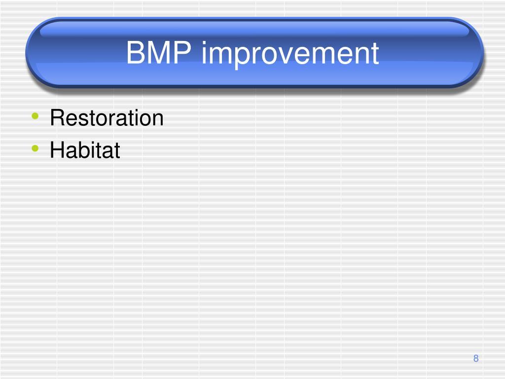 BMP improvement