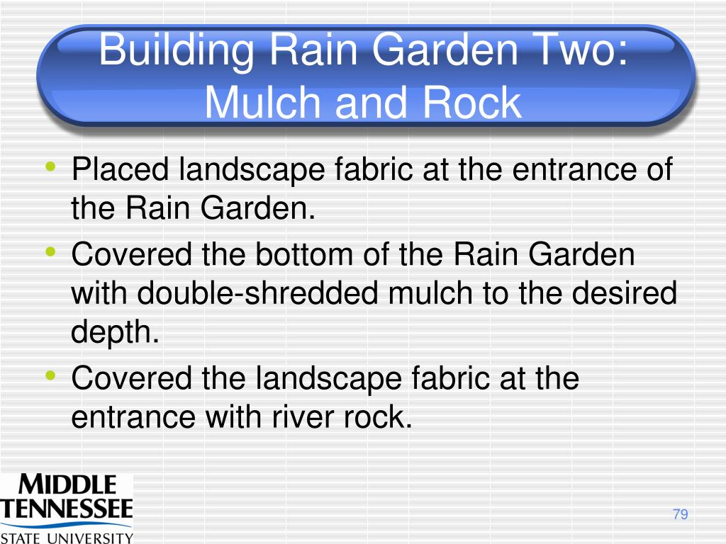 Building Rain Garden Two:  Mulch and Rock