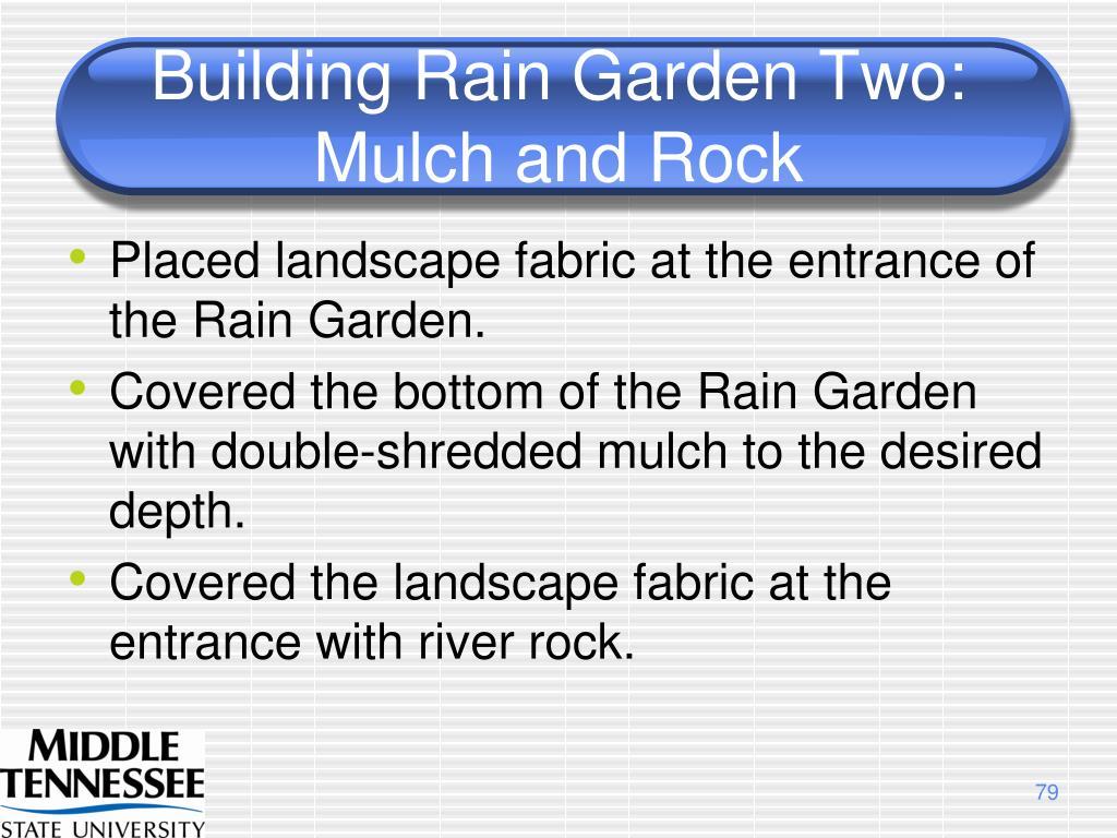 Building Rain Garden Two:  Mulch and Rock