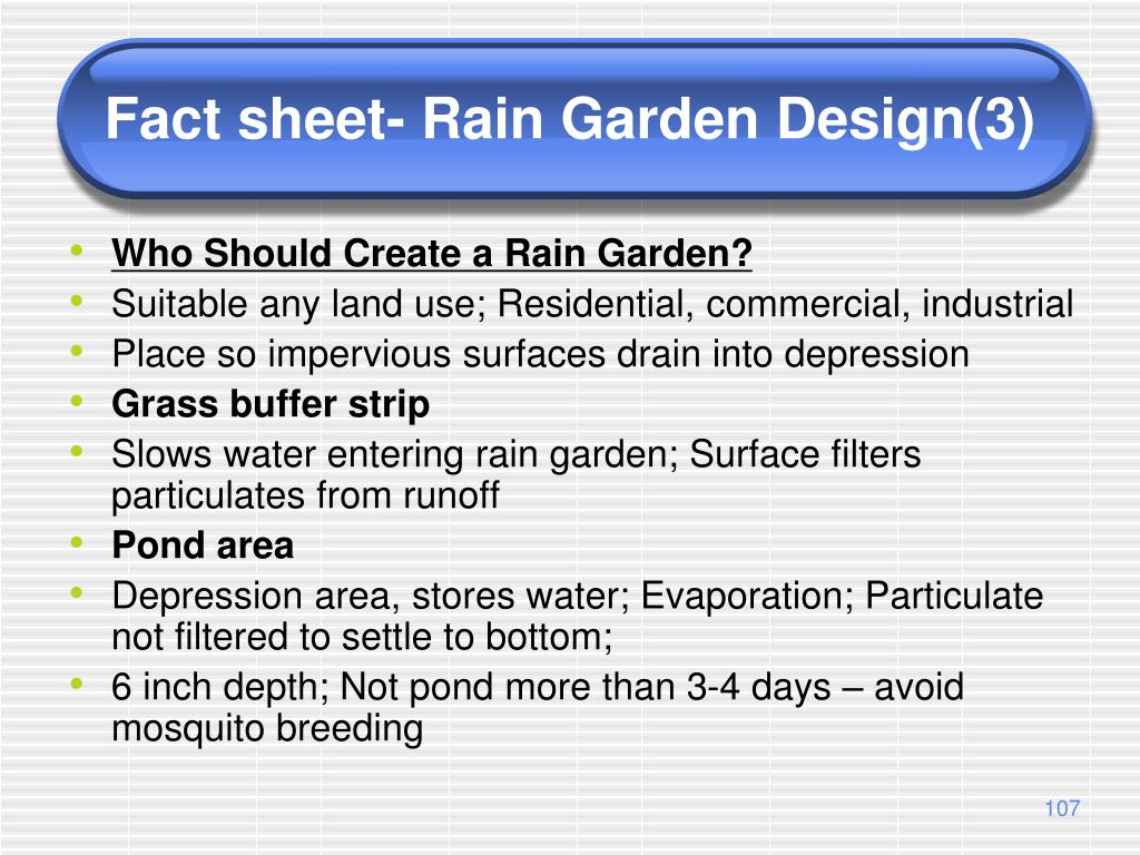 Fact sheet- Rain Garden Design(3)