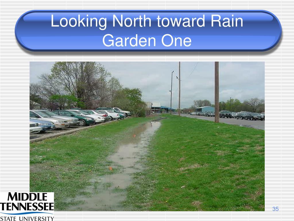 Looking North toward Rain Garden One