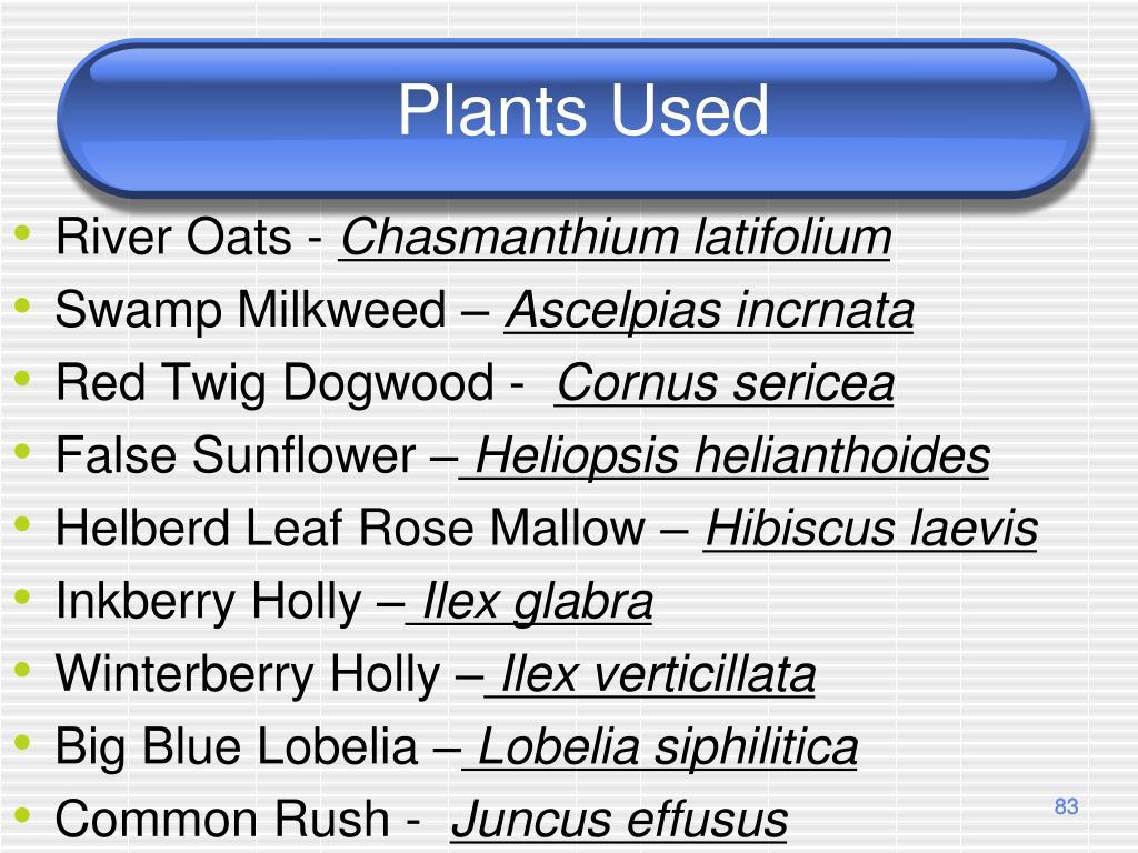 Plants Used