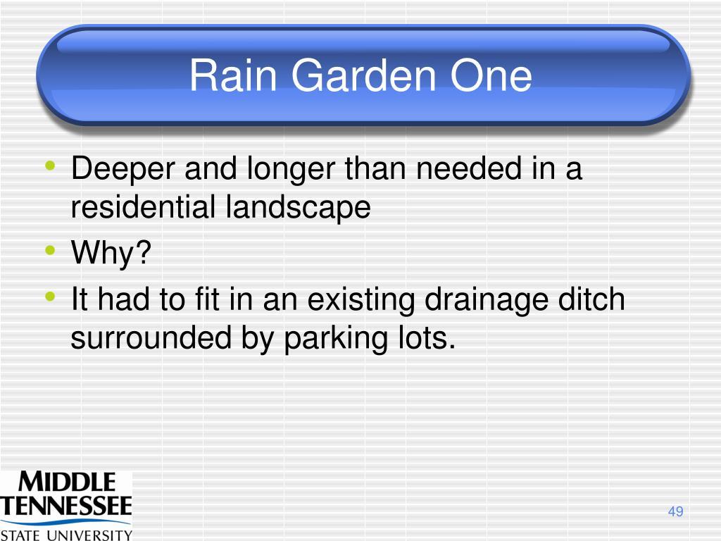 Rain Garden One