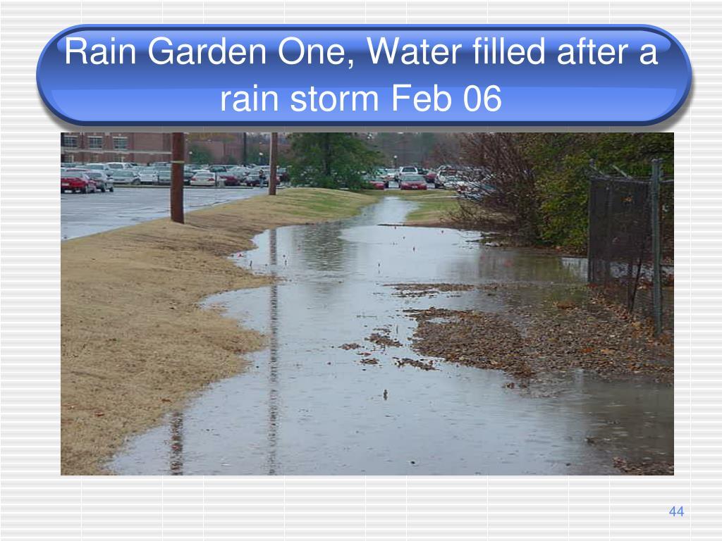 Rain Garden One, Water filled after a rain storm Feb 06