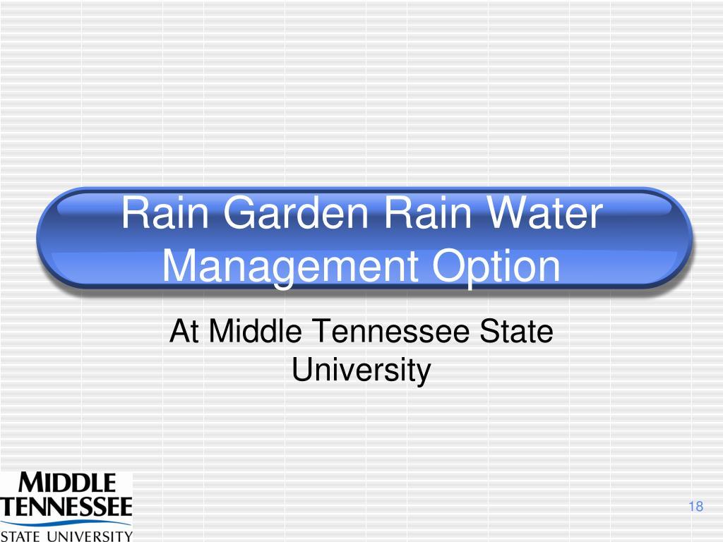 Rain Garden Rain Water Management Option
