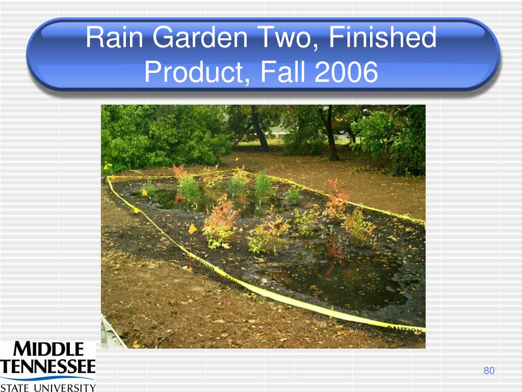 Rain Garden Two, Finished Product, Fall 2006