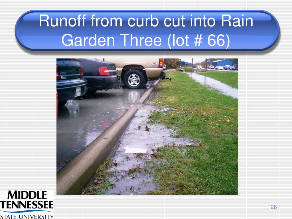 Runoff from curb cut into Rain Garden Three (lot # 66)