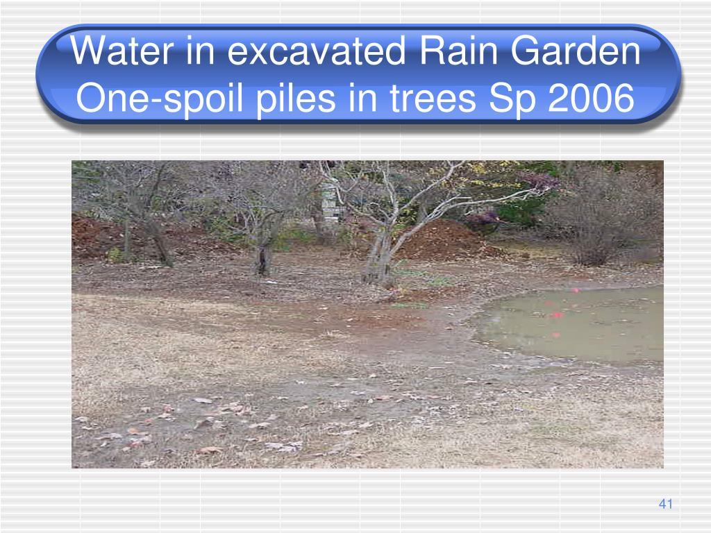 Water in excavated Rain Garden One-spoil piles in trees Sp 2006