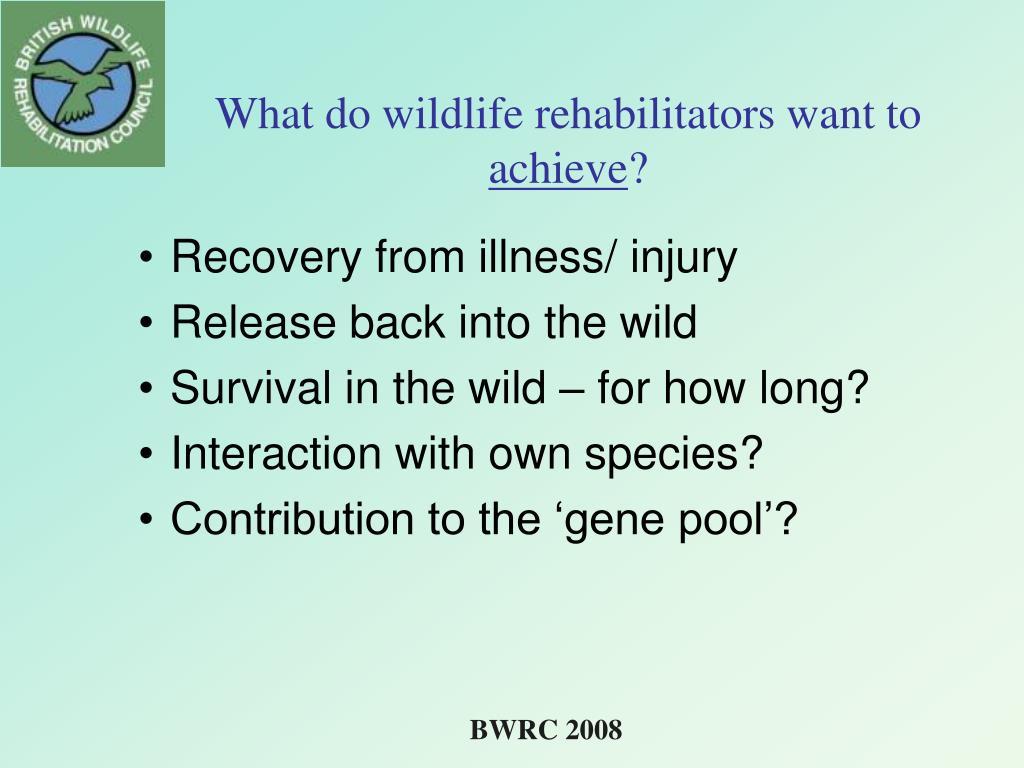 What do wildlife rehabilitators want to