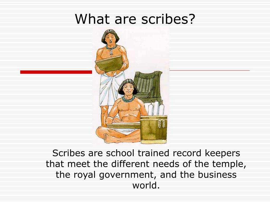 What are scribes?