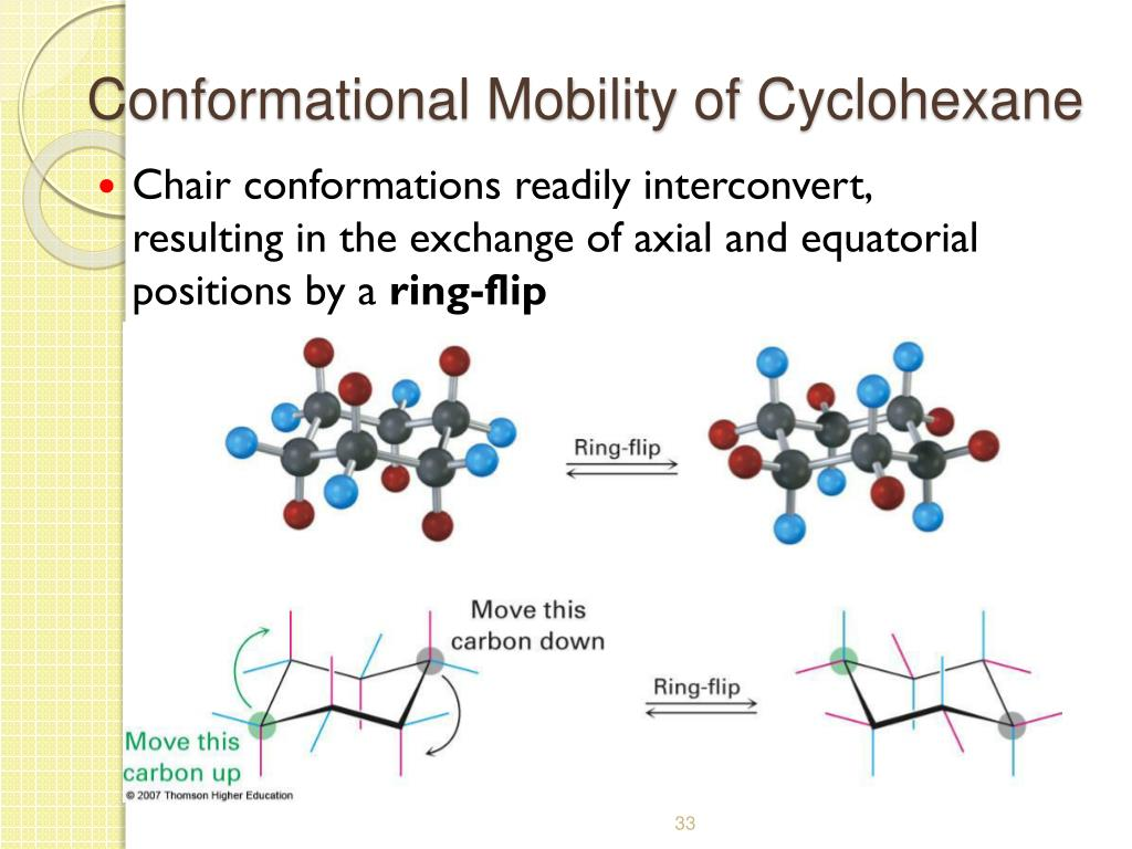 Conformational Mobility of