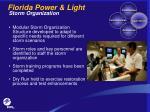 florida power light storm organization