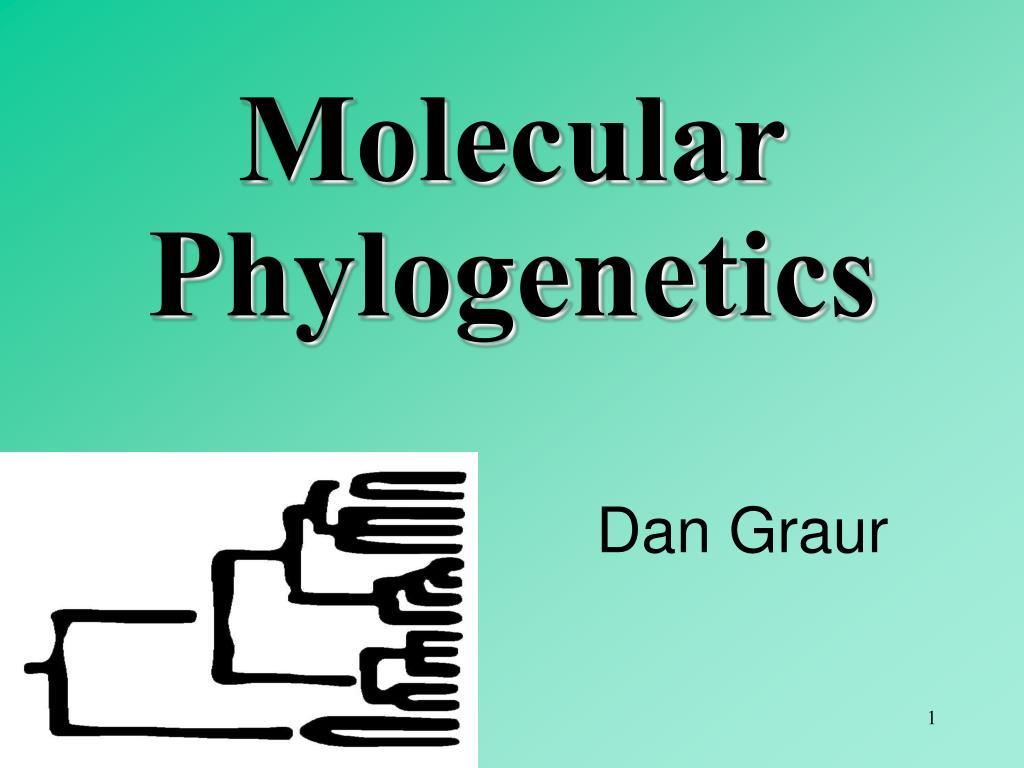 Molecular Phylogenetics