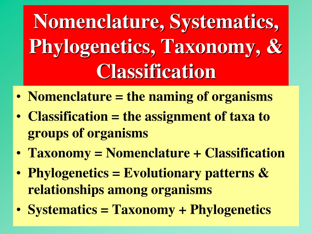 Nomenclature, Systematics,