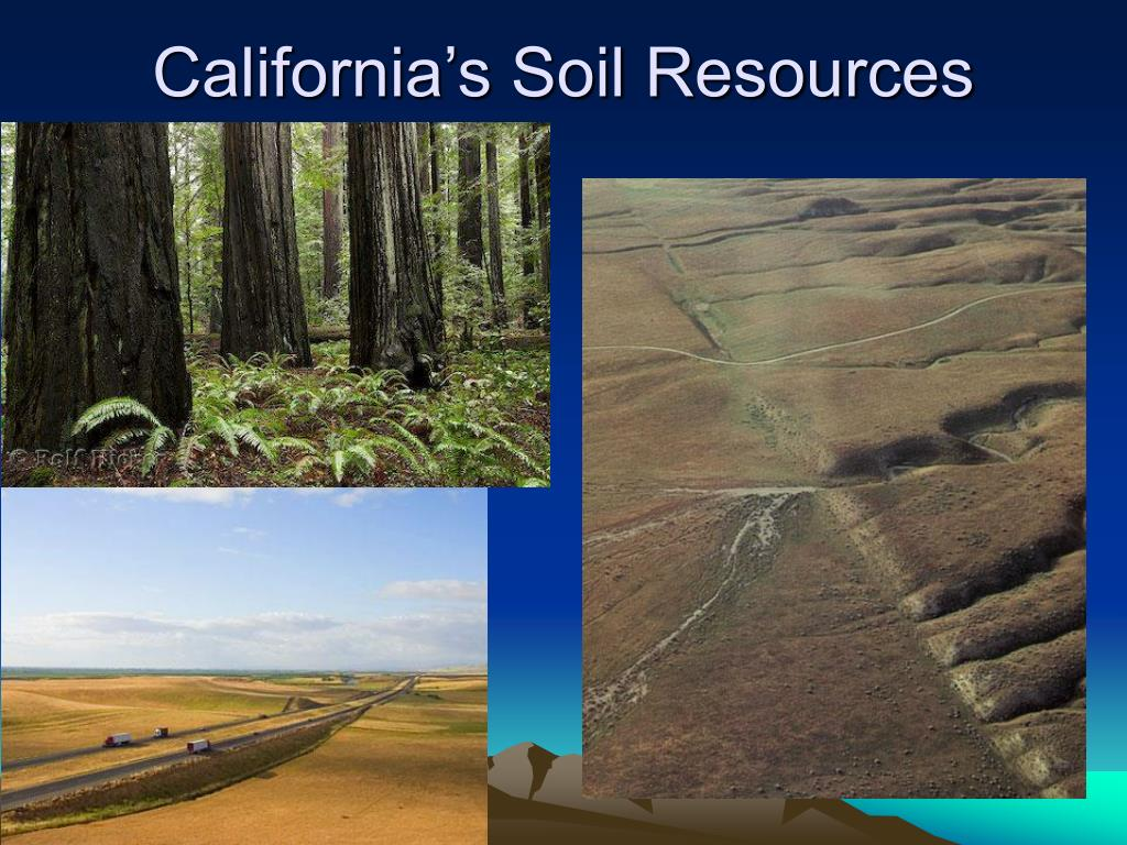 Ppt california s mineral energy and soil resources for What is soil resources