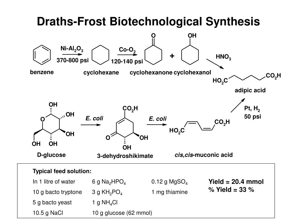 Draths-Frost Biotechnological Synthesis