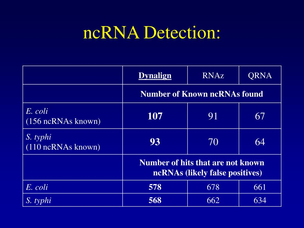 ncRNA Detection: