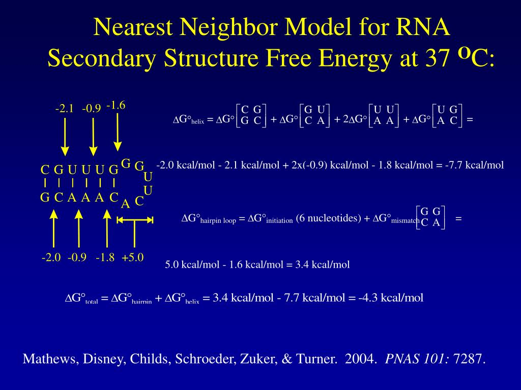 Nearest Neighbor Model for RNA