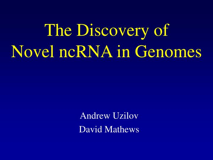 The discovery of novel ncrna in genomes l.jpg