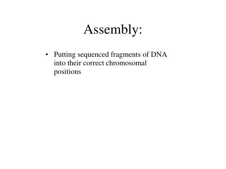 Assembly: