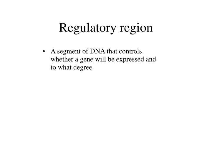 Regulatory region