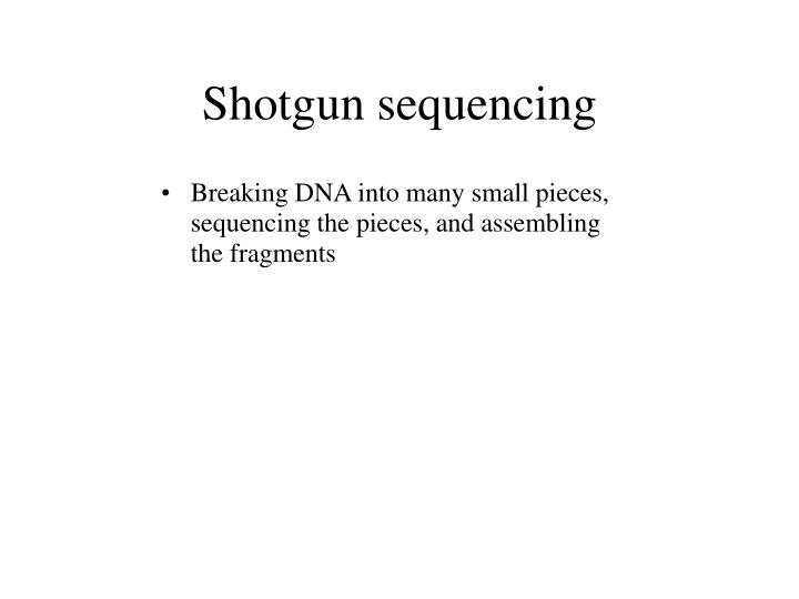 Shotgun sequencing