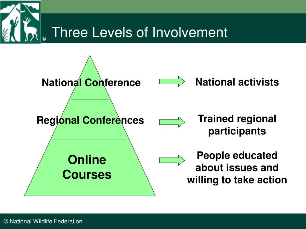 Three Levels of Involvement