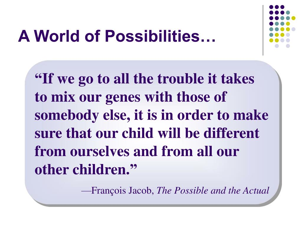 A World of Possibilities…