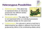 heterozygous possibilities