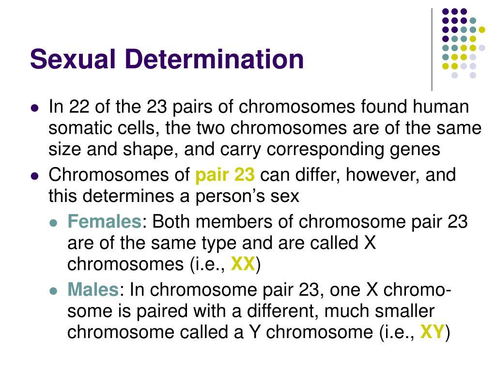 Sexual Determination