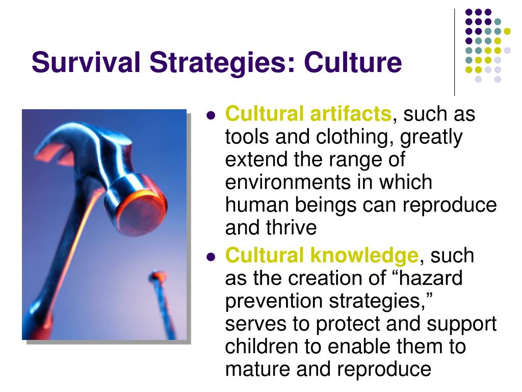 Survival Strategies: Culture
