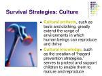 survival strategies culture
