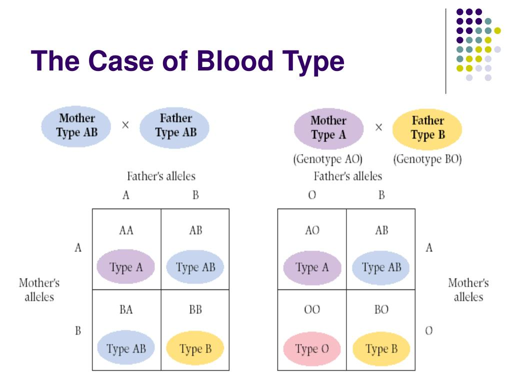 The Case of Blood Type