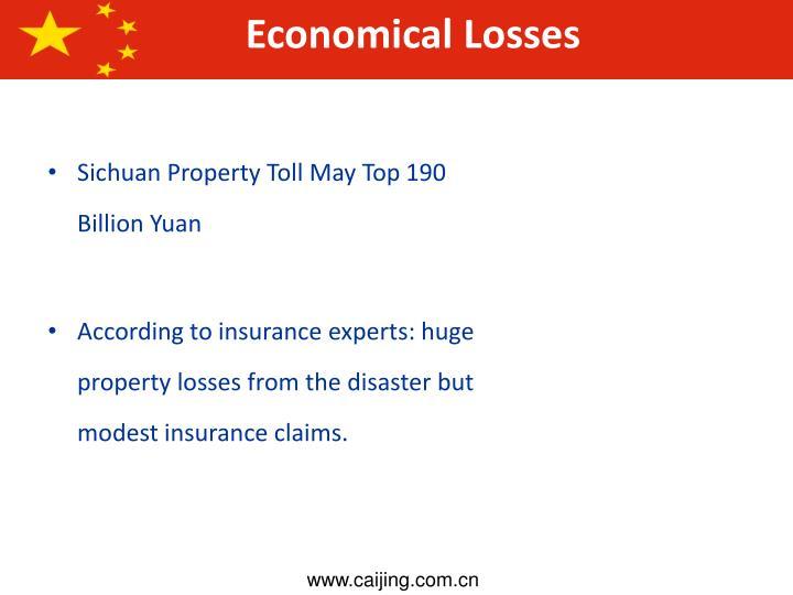 Economical Losses