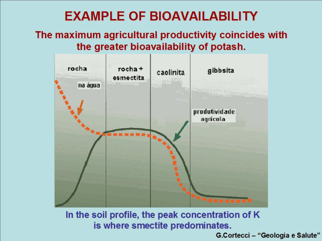 EXAMPLE OF BIOAVAILABILITY