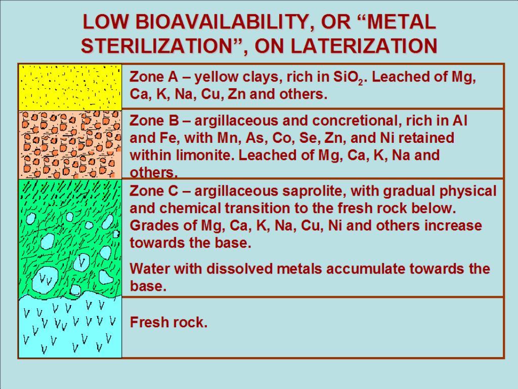 "LOW BIOAVAILABILITY, OR ""METAL STERILIZATION"", ON LATERIZATION"