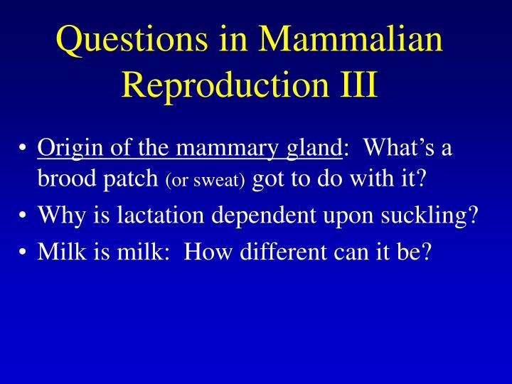 Questions in Mammalian Reproduction III