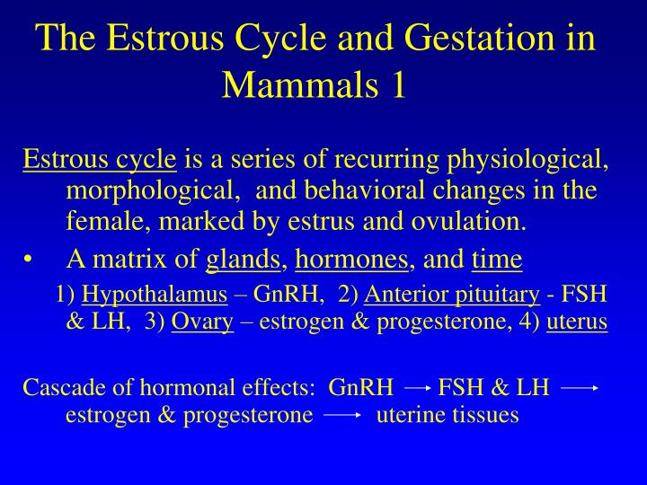 The Estrous Cycle and Gestation in Mammals 1