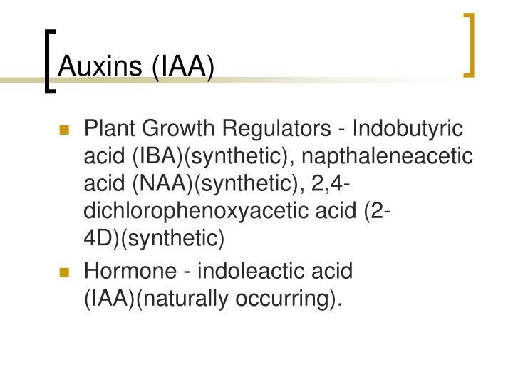 Auxins (IAA)
