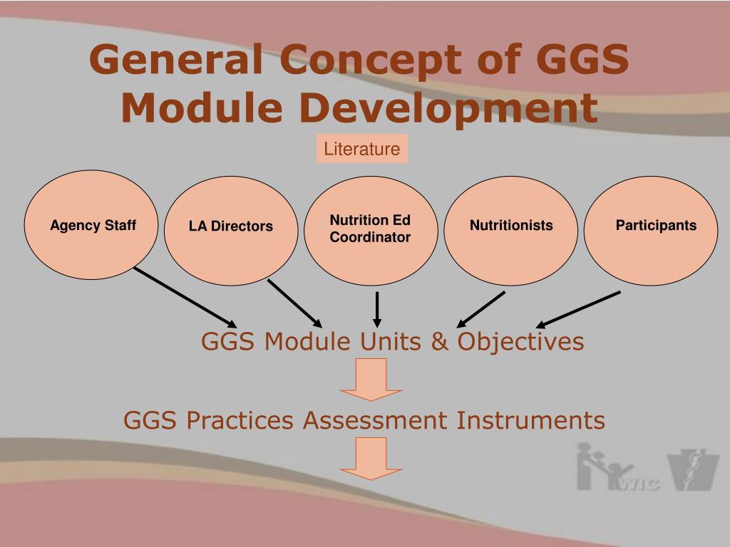 General Concept of GGS Module Development