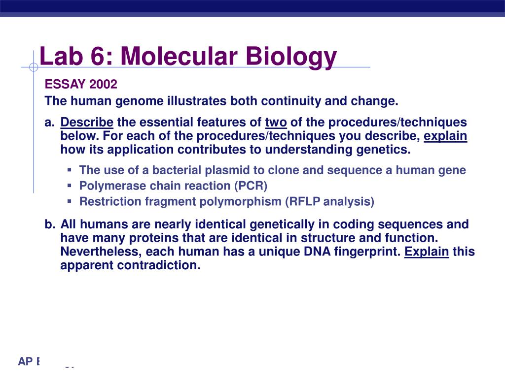 "molecular and cell biology essay Biology: epigenetics and nuerogensis essay - epigenetics and neurogenesis ""epigenetics"" is defined as to study the mechanisms which include dna and histone modifications that lead to change in the expression of genes or cellular phenotype without aleration in the primary sequence of the dna."