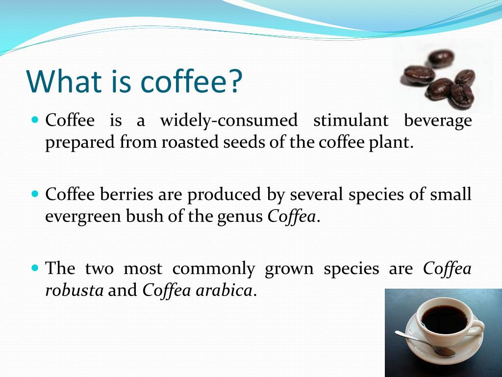 What is coffee?